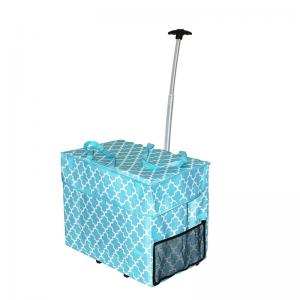 High capacity rolling craft bag