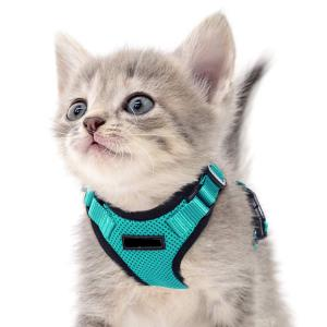 small cat harness